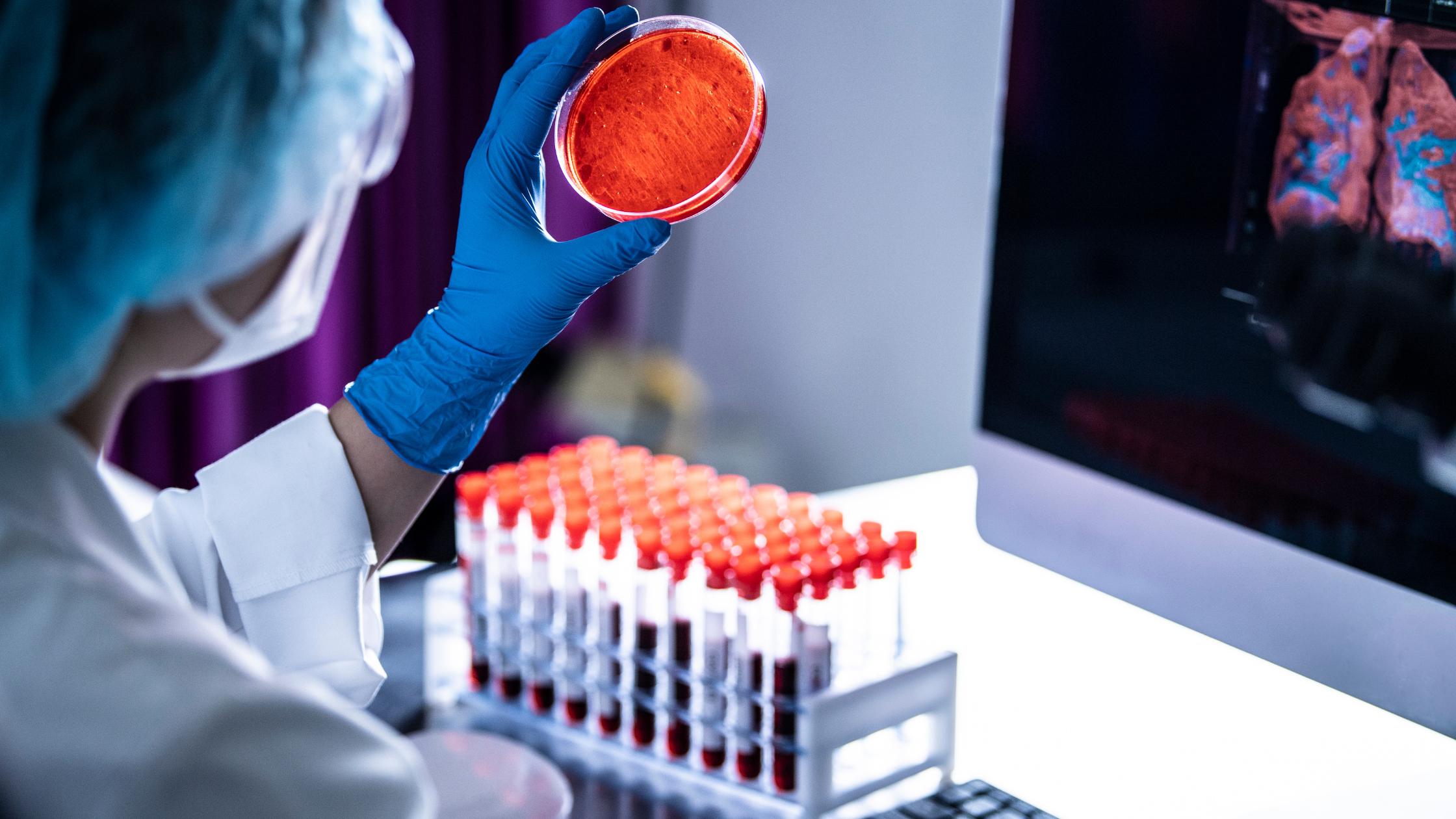 badania krwi wawer